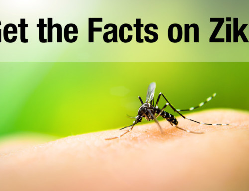 Get the Facts on Zika